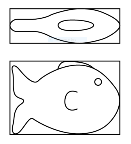 fish-picture